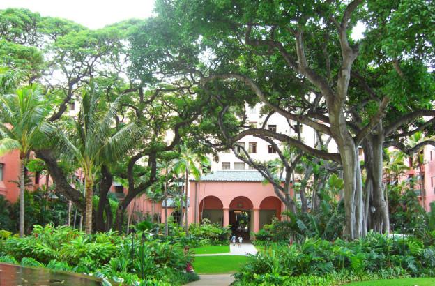 garden_in_hawaii